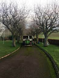 James Watt Tree and Garden Services – Tree Surgeon, Hedge Cutting, Waste Clearance, Landscaping & Fencing Gloucester